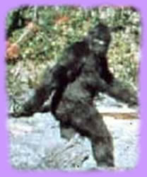 Bigfoot, also known as Sasquatch, is purportedly an ape-like creature that inhabits forests, mainly in the Pacific Northwest region of North America.